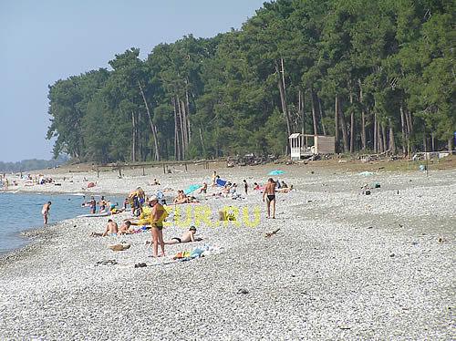 Леселидзе абхазия фото пляжа